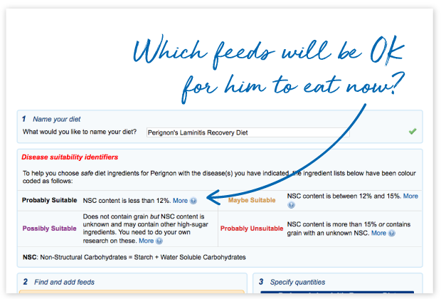 feed ingredients Archives - FeedXL Horse Nutrition Calculator