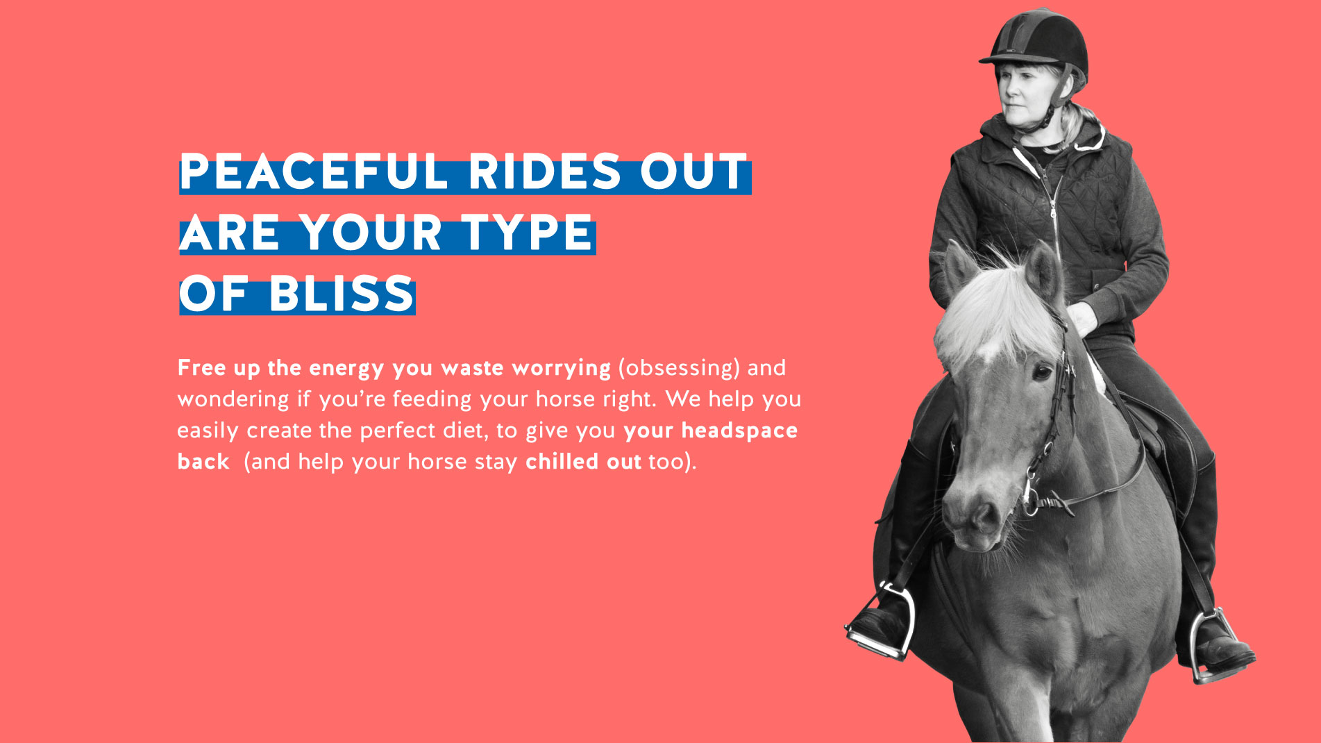 FeedXL promotion showing female rider on a brown horse.