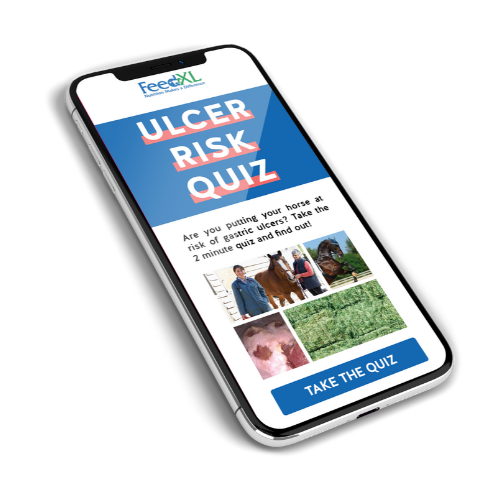 Ulcer Risk Quiz on phone screen