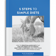 5 Steps to Simple Diets Ebook